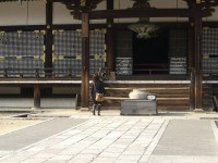 Japonė apžiūrinėja šventyklą