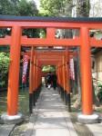 Šintoistų vartai, Ueno parkas