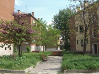 Parkas Murano