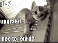 LOL Leopard
